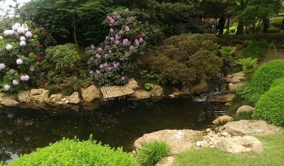 Ботанический сад в праге история